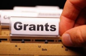 Government grants giveaways and subsidized trips